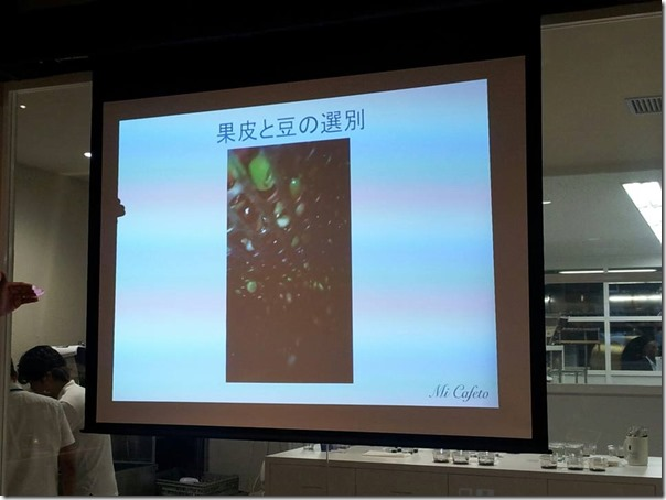 コーヒー豆選別方法