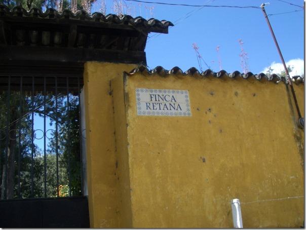 グァテマラレタナ農園1